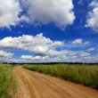 Road through the field under beautiful sky in the clouds — Stock Photo #51087445