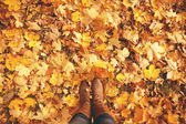 Conceptual legs in boots on the autumn leaves. Feet shoes walkin — Zdjęcie stockowe