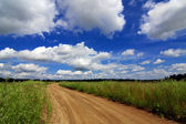 Road through the field under beautiful sky in the clouds — Stock Photo