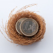 Euro coins in nest — Stock Photo #24877533