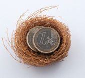 Euro coins in nest — Stock Photo