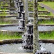 Row of water fountains at Tirtagangga Water Temple - Stok fotoğraf