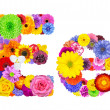 Flower Alphabet Isolated on White - Letter E — Stock Photo