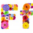 Flower Alphabet Isolated on White - Letter F — Stock Photo