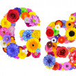Flower Alphabet Isolated on White - Letter G — Stock Photo