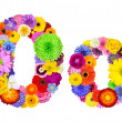 Flower Alphabet Isolated on White - Letter O — Stock Photo