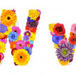 Flower Alphabet Isolated on White - Letter W — Stock Photo