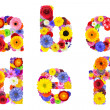 Floral Alphabet Isolated on White - Letters A, B, C, D, E, F — Stock Photo #31774043