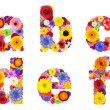 Floral Alphabet Isolated on White - Letters A, B, C, D, E, F — Stock Photo
