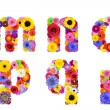 Floral Alphabet Isolated on White - Letters M, N, O, P, Q, R — Stock Photo #31774055