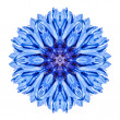 Blue Cornflower Mandala Flower Kaleidoscope Isolated on White — Stock Photo