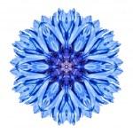 Blue Cornflower Mandala Flower Kaleidoscope Isolated on White — Stock Photo #33594975