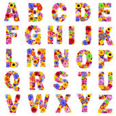 Full Floral Alphabet Isolated on White - Letters A to Z — Stock Photo