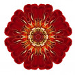 Purple Kaleidoscopic Dahlia Flower Mandala Isolated on White — Stock Photo #35490687