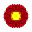 Red Mandala Flower Kaleidoscopic Isolated on White — Stock Photo