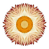 White Straw Mandala Flower Kaleidoscopic Isolated on White — Stock Photo