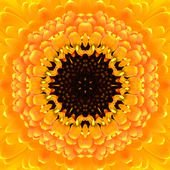 Yellow Concentric Flower Center. Mandala Kaleidoscopic design — Stock Photo
