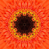 Orange Concentric Flower Center. Mandala Kaleidoscopic design — Stock Photo