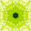 Green Concentric Flower Center. Mandala Kaleidoscopic design — Stock Photo #37385823