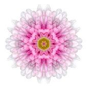 Kaleidoscopic Flower Mandala  Isolated on White — Foto de Stock