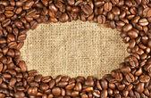 Kahve çekirdekleri ehlileştirmek üzerinde — Stok fotoğraf