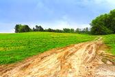 Landweg door een veld hdr — Stockfoto