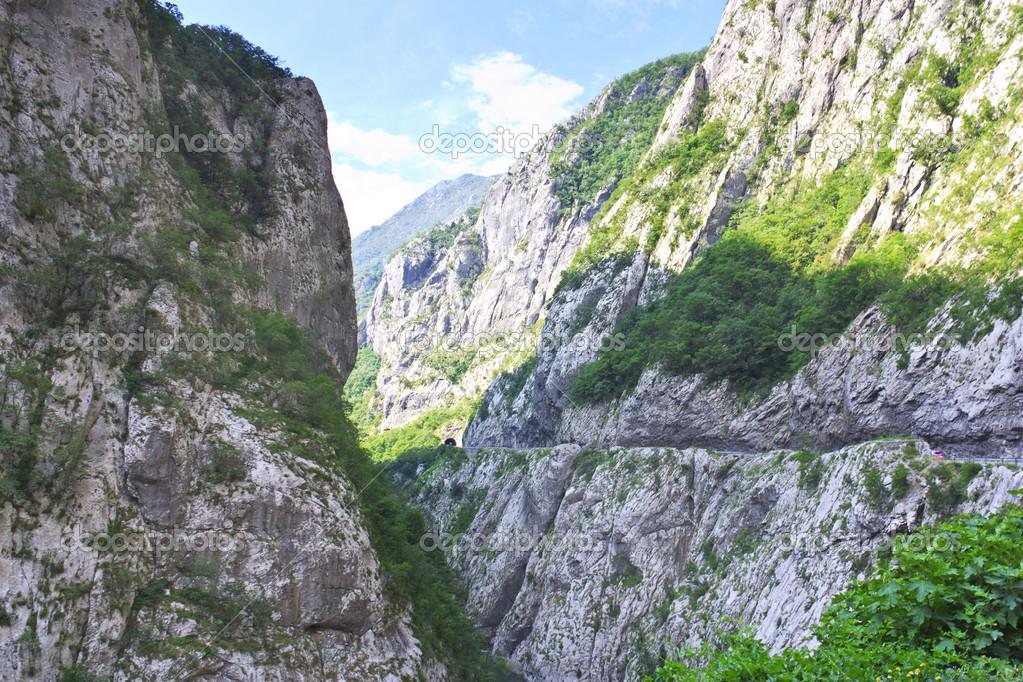 在黑山读出塔拉河峡谷