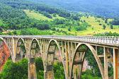 мост djurdjevica в черногории — Стоковое фото