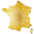 Map of france — Stock Vector #7923671