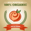 Organic Fruit Poster Design with Peach Icon — Stock Vector