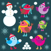 Set of winter birds and snow man — Stock Vector