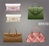 Female bags. — Stock Vector