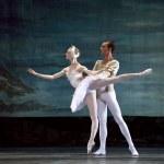 Swan Lake ballet — Stock Photo #14182405