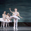 Swan Lake ballet — Stock Photo #14555585