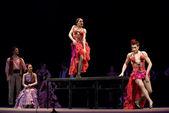 スペインのフラメンコ ダンサー — ストック写真