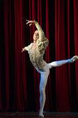 Ballet do lago dos cisnes — Foto Stock