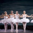 Stock Photo: Pretty ballerinas
