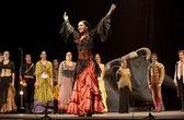 The Flamenco dancer — Stock Photo