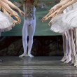 Stock Photo: Ballerinas