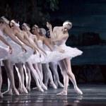 Swan Lake ballet — Stock Photo #21546007