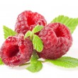 Composition of Raspberry — Stock Photo #12668258