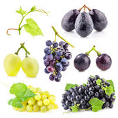 Collection of Ripe grapes with leaves — Stock Photo