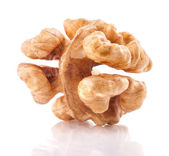 Kernel walnut — Stock Photo