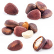 Pine nuts, closeup — Stock Photo #13351795