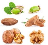 Walnuss, mandel und pistazie nüsse — Stockfoto