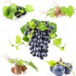 Dark grapes and cork — Stock Photo