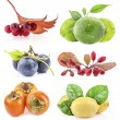 Collection of berry and fruit — Stock Photo