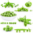 Collection Fresh green pea pod and peas — Stock Photo #14075003