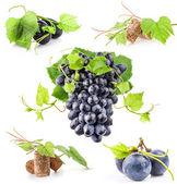 Dark grapes and cork — Stock Photo