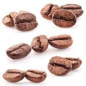 Insieme di chicchi di caffè — Foto Stock